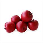 Jablka umělá 9ks/2,5cm červená - velkoobchod, dovoz květin, řezané květiny Brno
