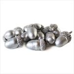 Žaludy natur 36ks metalic stříbrná - velkoobchod, dovoz květin, řezané květiny Brno