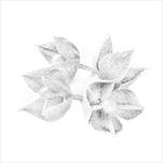 Květ přízdoba pvc 4ks/5cm bílá - velkoobchod, dovoz květin, řezané květiny Brno