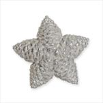 Hvězda šišky 9cm bílá - velkoobchod, dovoz květin, řezané květiny Brno