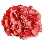 Hortenzie květ pr.20cm korálová - velkoobchod, dovoz květin, řezané květiny Brno