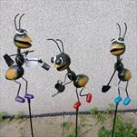 Kov mravenec zápich - velkoobchod, dovoz květin, řezané květiny Brno