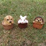 Ke ježek, pes králík v košíčku - velkoobchod, dovoz květin, řezané květiny Brno