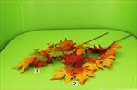 Uk Javor větev 80cm podzim - velkoobchod, dovoz květin, řezané květiny Brno
