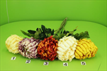 Uk chyrzantéma lux 75cm mix - velkoobchod, dovoz květin, řezané květiny Brno