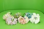 Uk hortenzie krátká - velkoobchod, dovoz květin, řezané květiny Brno