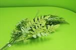 Uk Větev listy - velkoobchod, dovoz květin, řezané květiny Brno