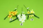 Uk Narcis pick - velkoobchod, dovoz květin, řezané květiny Brno