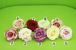 Uk květ růže poupě - velkoobchod, dovoz květin, řezané květiny Brno