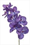 Uk Vanda 98cm blue - velkoobchod, dovoz květin, řezané květiny Brno