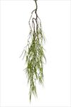 Uk Rhipsalis deco hanging 90cm green - velkoobchod, dovoz květin, řezané květiny Brno