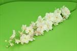 Uk Delphinium 128cm pink - velkoobchod, dovoz květin, řezané květiny Brno