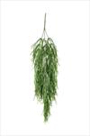 Uk Rhipsalis vine X3/80cm green - velkoobchod, dovoz květin, řezané květiny Brno