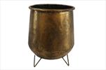 Obal kov Tasmine D26H32 antique gold - velkoobchod, dovoz květin, řezané květiny Brno