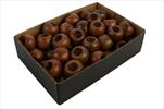 Větvička Taxus Berry 36ks mix hnědá - velkoobchod, dovoz květin, řezané květiny Brno