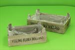 Bedýnka dřevo Flora S/2 - velkoobchod, dovoz květin, řezané květiny Brno