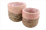 Koše Sea Grass S/2 pink/burgundy - velkoobchod, dovoz květin, řezané květiny Brno