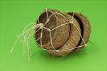 Miska Basic coconut half 3pcs/10-14cm natur - velkoobchod, dovoz květin, řezané květiny Brno