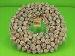Věnec Coco Fruit Whitewashed 30cm - velkoobchod, dovoz květin, řezané květiny Brno