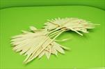 Su Sun cut 5pcs bleach - velkoobchod, dovoz květin, řezané květiny Brno