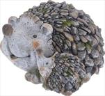 Ke ježek s mládětem - velkoobchod, dovoz květin, řezané květiny Brno